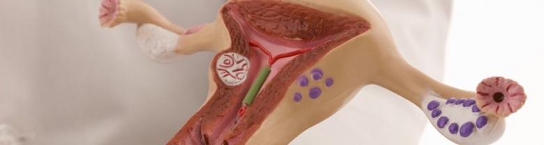Urethra surgery