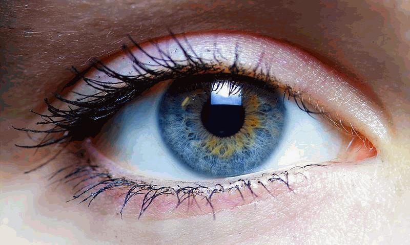 Stem Cells in Ophthalmology