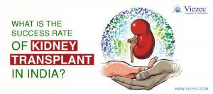 Kidney Transplant In India